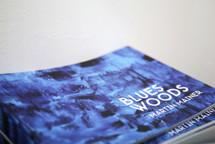 Novagalerie(3).jpg - Katalog k výstavě Blues Woods
